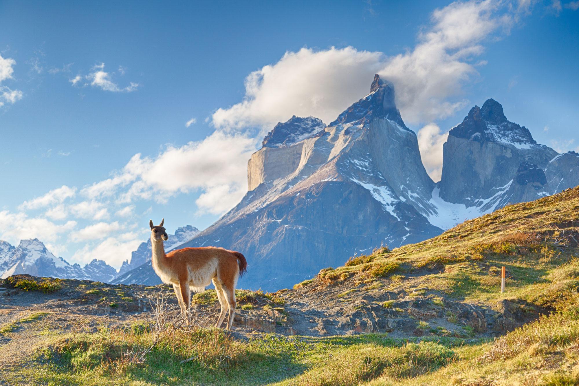 칠레, 산티아고 파타고니아 10일